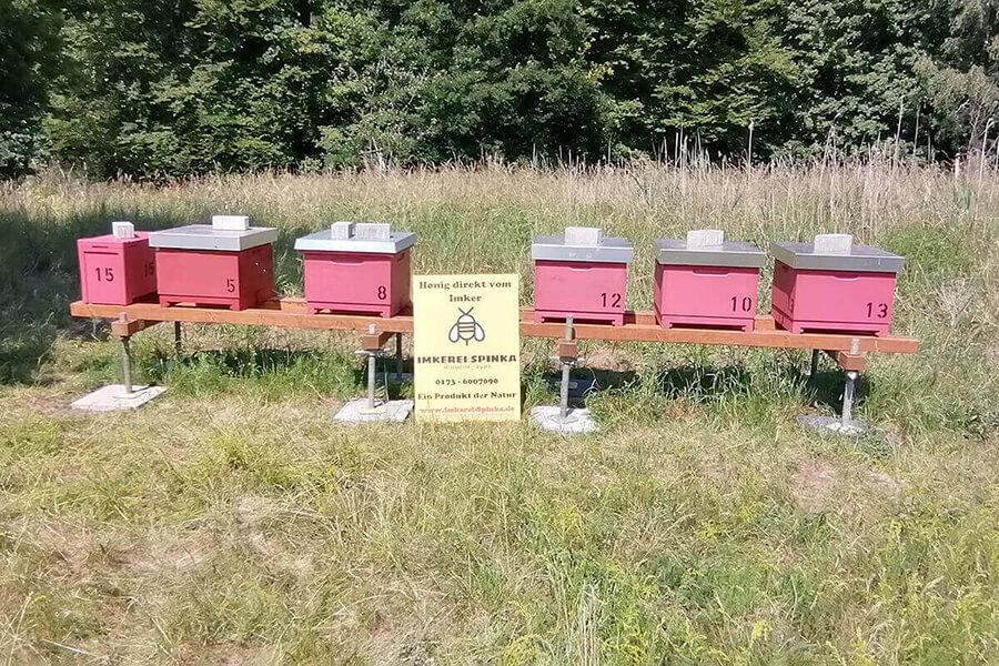 Bienenstöcke auf dem Geländer der Pumpsation Selbeck frontal